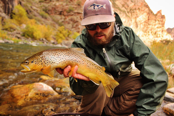 Gallery: Josh Beasley Brown Trout