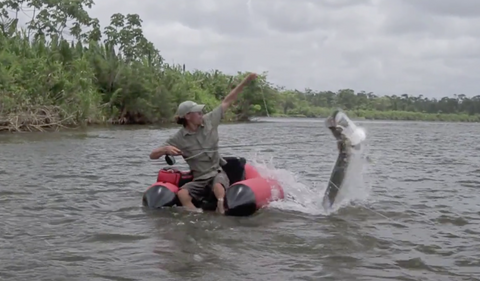 VIDEO: Huge tarpon caught from float tube