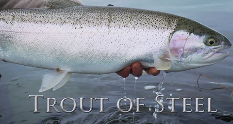 VIDEO: Trout of Steel