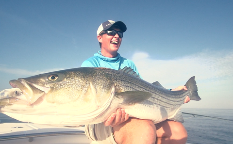"""Between the Lines"": Fly Fishing for Big Striped Bass"