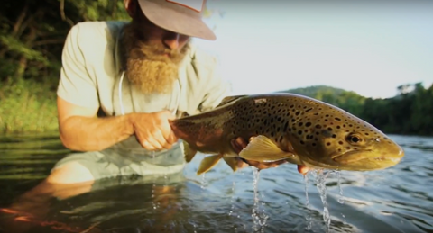 WATCH: Golden Hour Streamer Strike