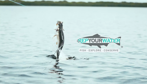WATCH: Mental (Not-So-Baby) Tarpon