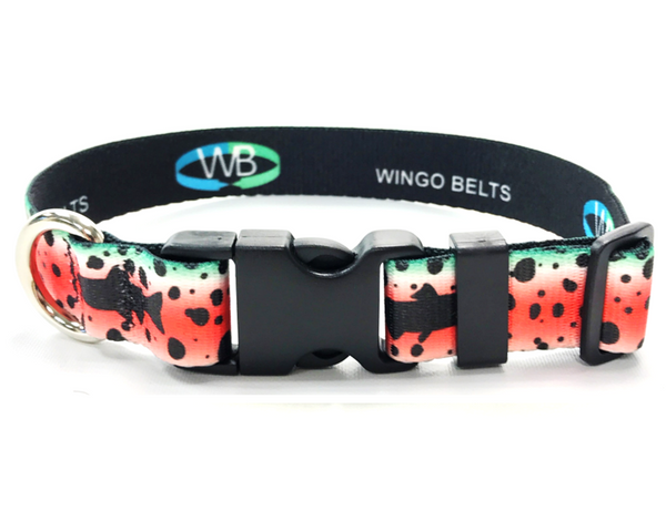 Wingo Dog Collars