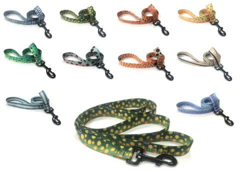 Fish Skin Dog Leashes
