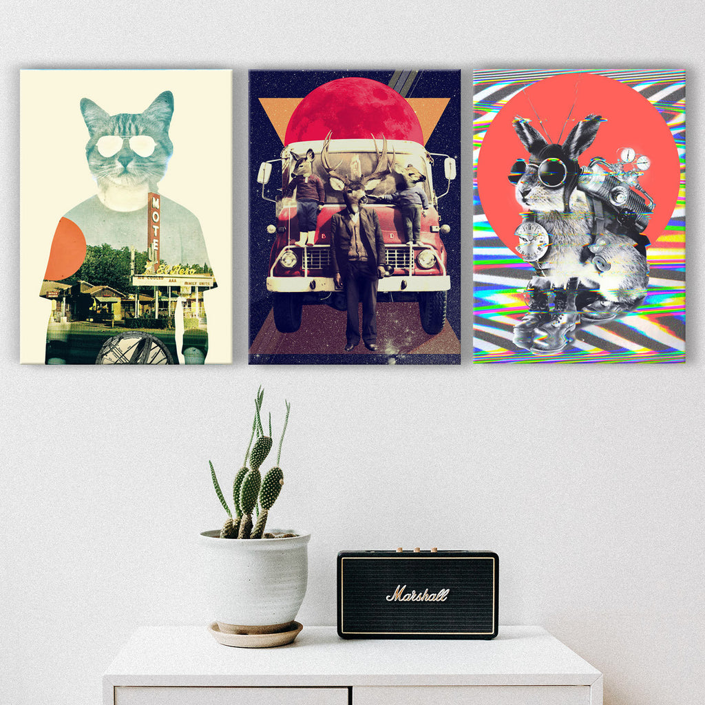 Animals Set of 3 Canvas Wall Art, Funny Animals Canvas Wall Decor, Funky Animal Art Print Home Decor Gift