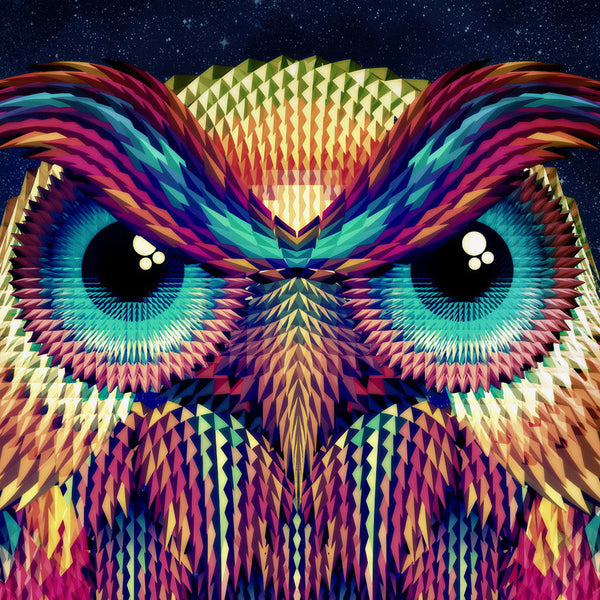 Owl Art Print, Geometric Pattern Wall Art, Abstract Animal Poster