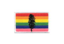 Load image into Gallery viewer, Northwest Vibes Cascadia Rainbow Patch