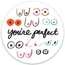 Load image into Gallery viewer, The Found Die Cut Vinyl Sticker Boobs You're Perfect