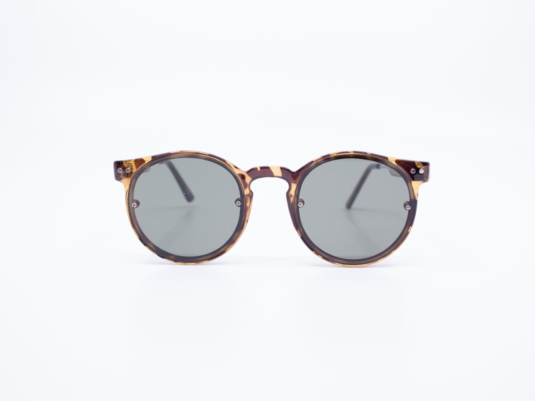 Spitfire Post Punk Sunglasses in Tortoise/Black