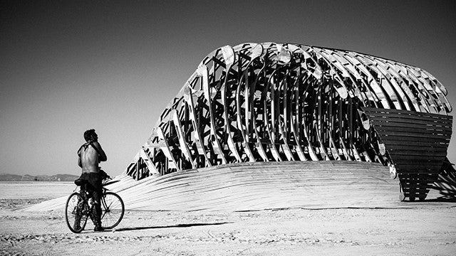 Burning Man 2014 - 5645 - Desktop Image