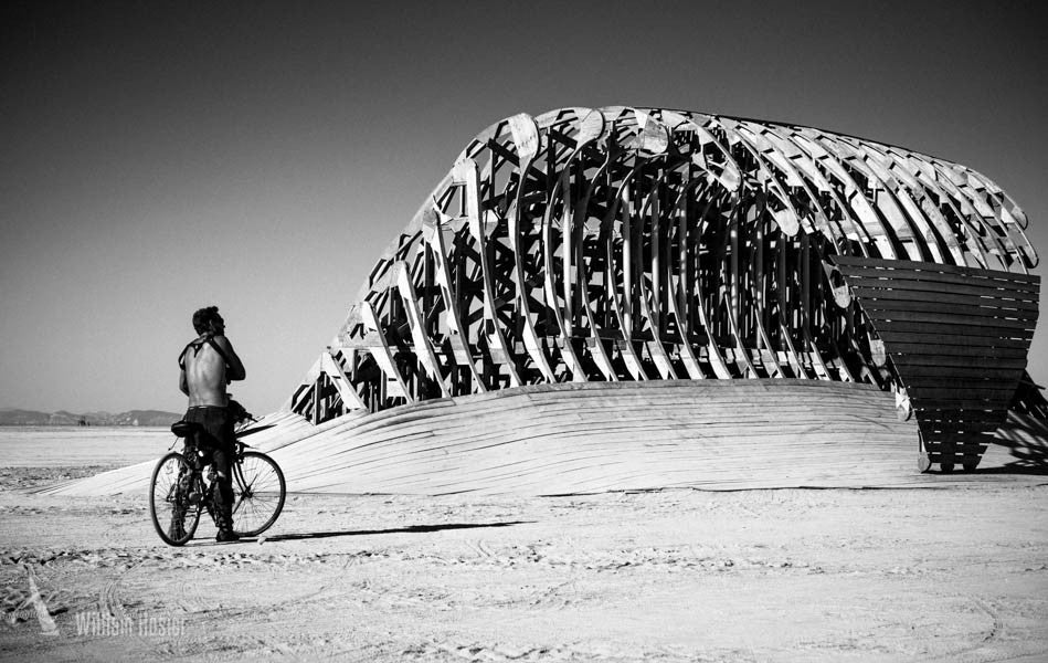 Burning Man 2014 - 5645