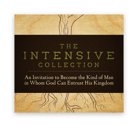 The Intensive Collection - Download