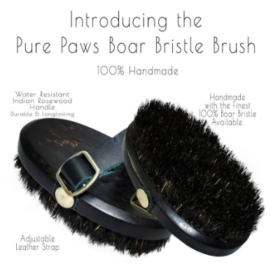 Pure Paws - Brush - Boar Bristle
