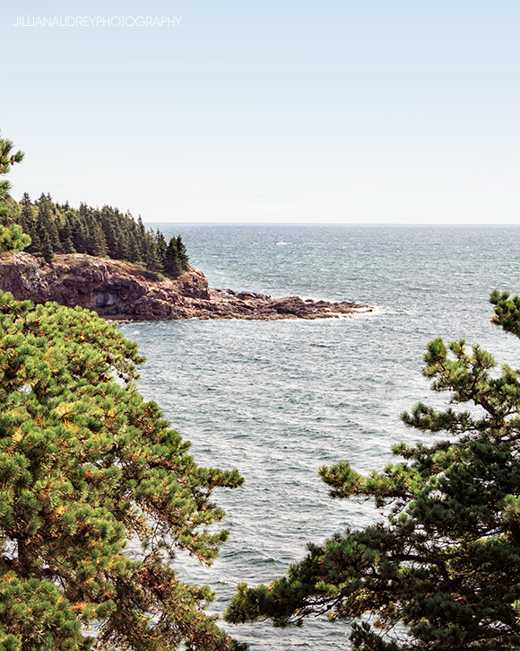 Summer in Acadia / Photography Print