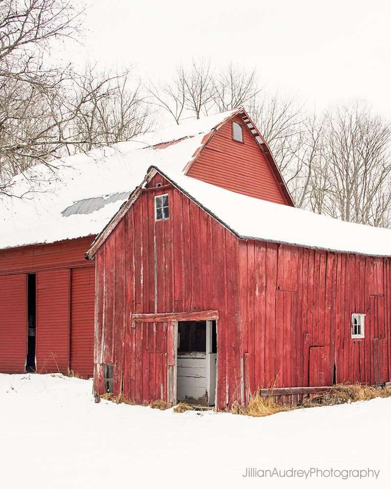 Barn Duo / Photography Print