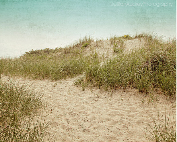 Cape Dunes / Photography Print