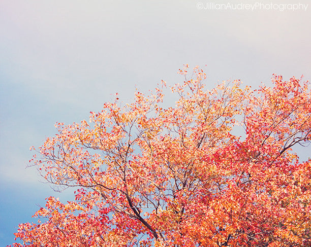 Colorful October / Photography Print