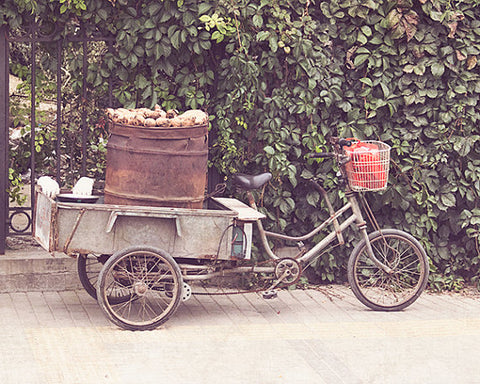 Yam Cart / Photography Print