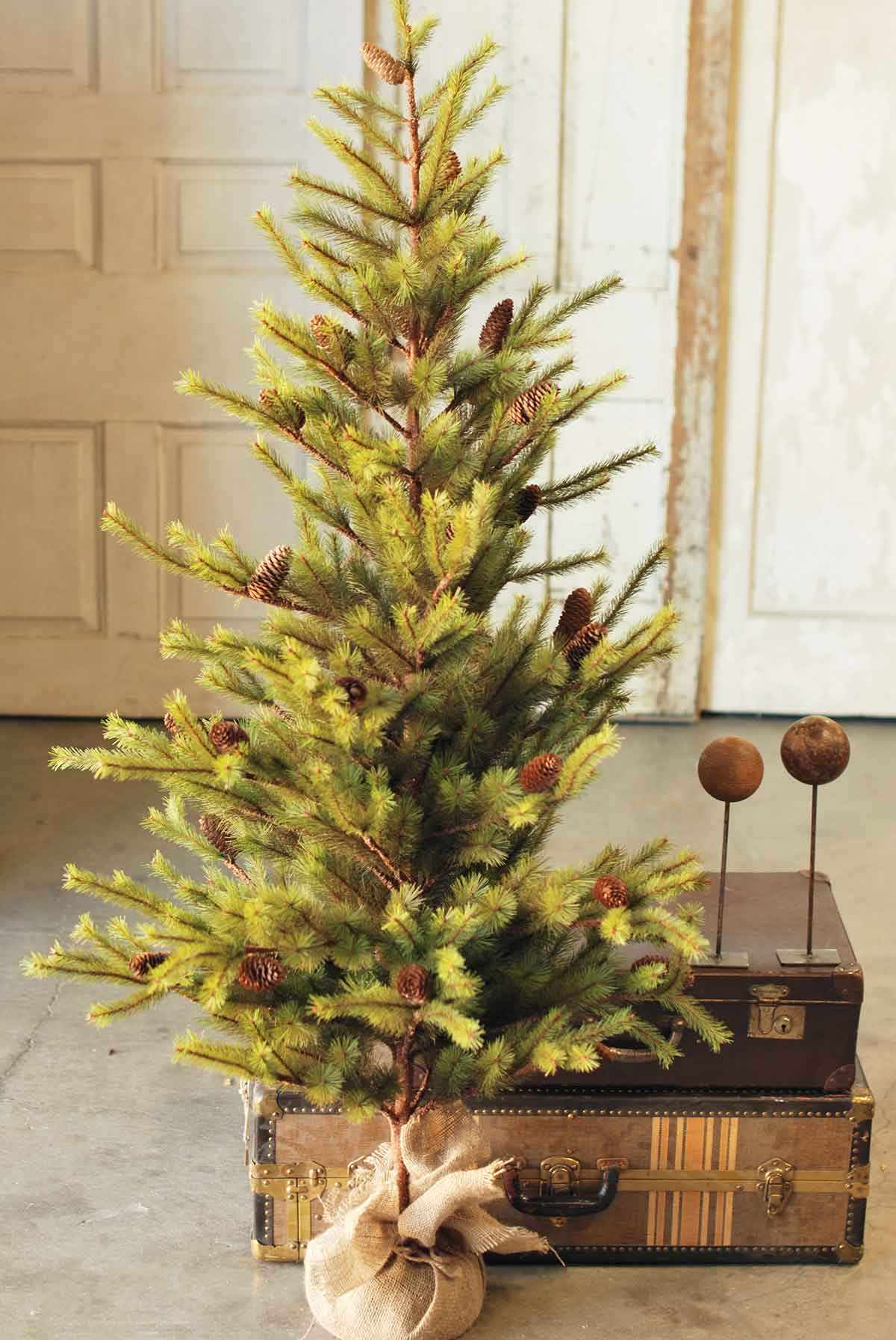 Christmas Trees Wholesale | Lancaster Home and Holiday - Lancaster ...