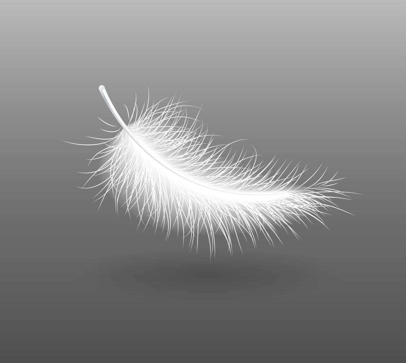 goose down feather from pillow