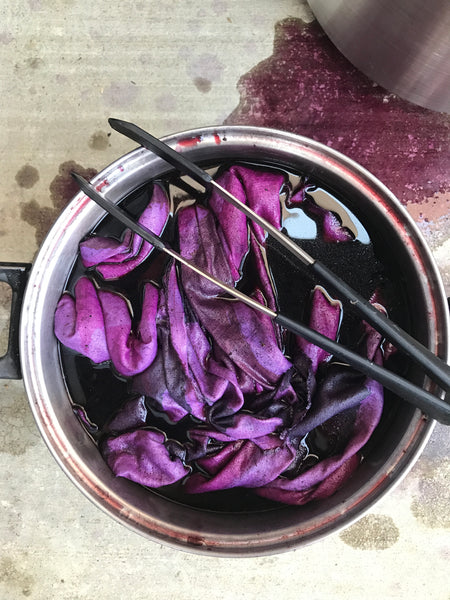 Natural Dye Printing with Traveling Miles Studio - November 10th