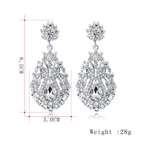 #02538100 Classic Teardrop-shaped Alloy Rhinestone Earrings