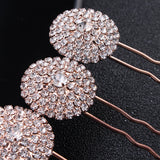 #03448193 Fashionable Rose Gold Rhinestones/ Alloy Hairpins (Set for 4)