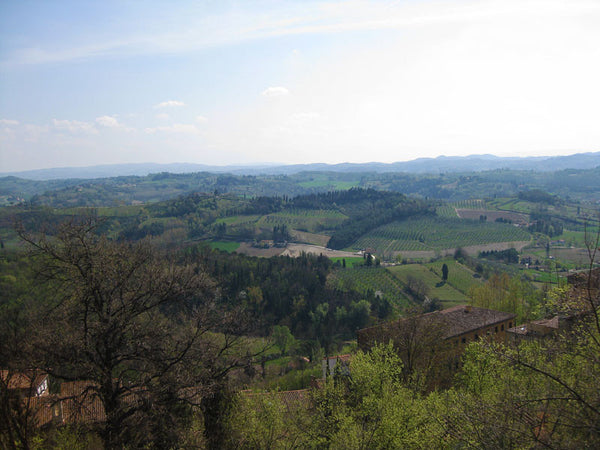 View from tower in San Miniato