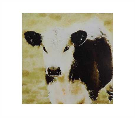 Canvas Wall Décor w/ Cow ©