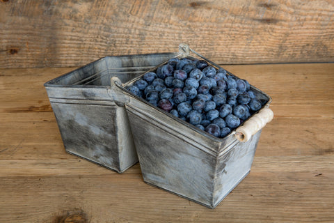 Double Blueberry Basket