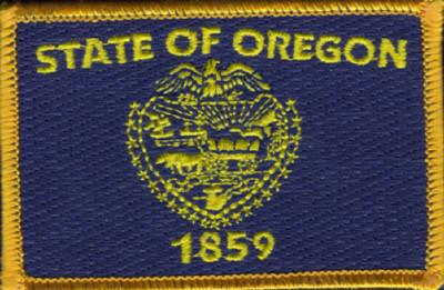 State Flag Iron/Sew on Patch