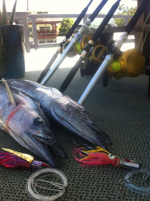 Ahi Fishing: February 2016