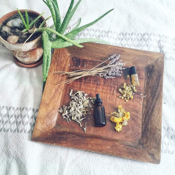 HEALING HERBS TO GROW