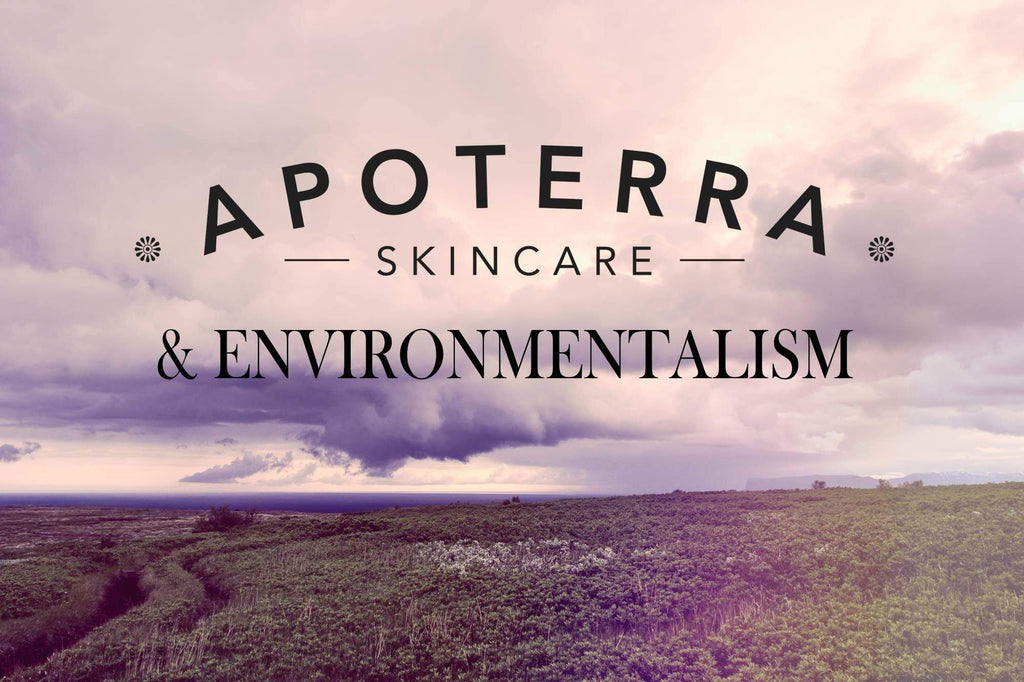 ENVIRONMENTALISM IS NOT A DIRTY WORD:  WHY WE VALUE BEING AN ECO-FRIENDLY SKINCARE COMPANY