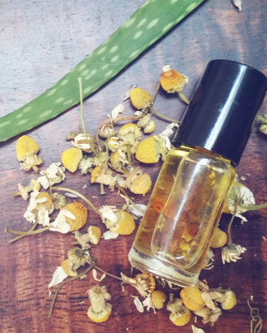 Chamomile oil infusion for skincare
