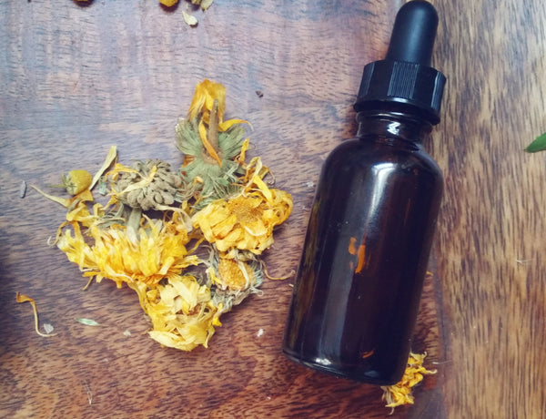 Calendula oil infusion for skincare