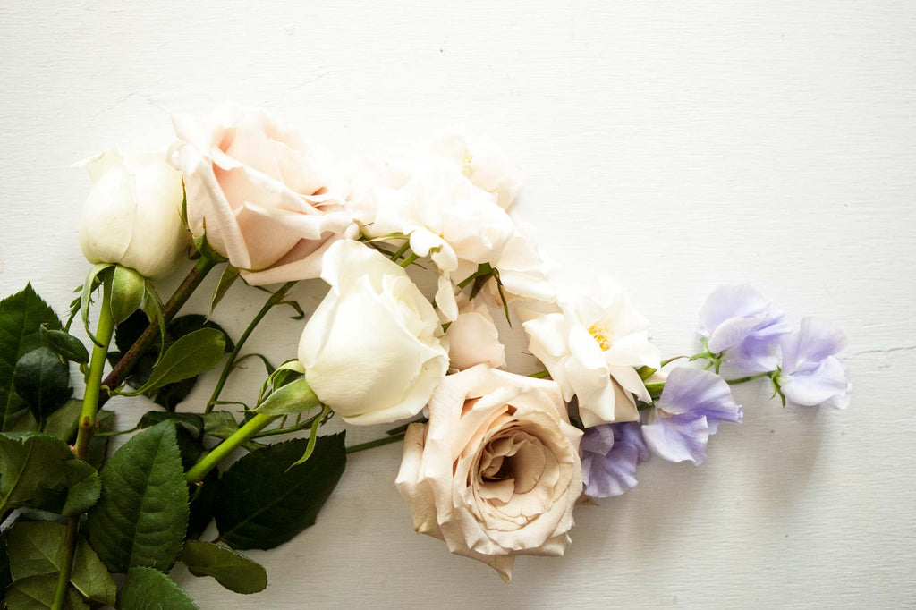 Ingredient Highlight: Rose and Rose Water Skin Benefits