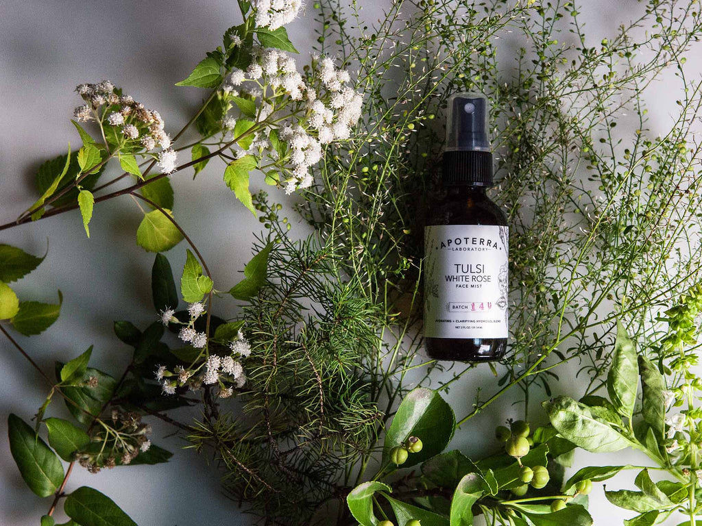 Apoterra Laboratory Tulsi and White Rose Face mist