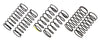 ASC21558-Ft-10mm-Rear-Spring-Set.