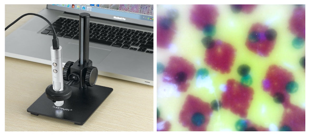 B011 5MP 500X Portable USB Digital Microscope with Interchangeable Lens