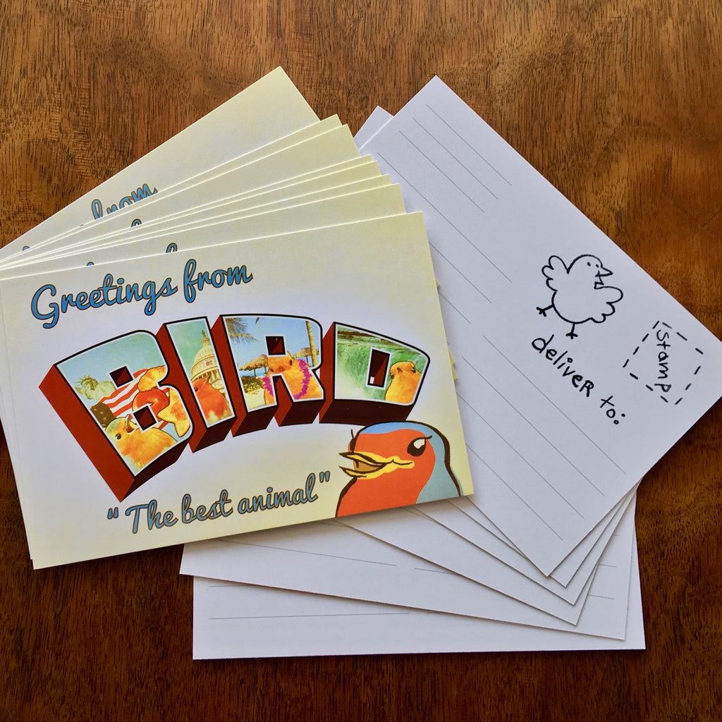 GREETINGS FROM BIRD POSTCARD