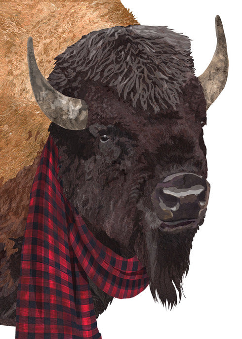 Buffalo with scarf holiday card