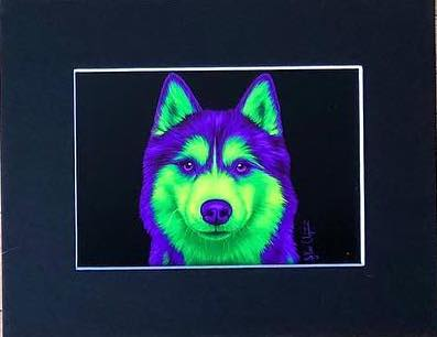 Animal Art Prints