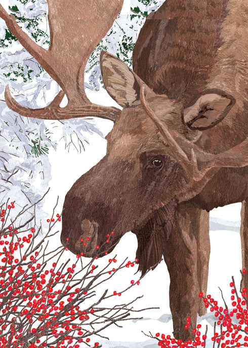 Moose With Berries Holiday Card
