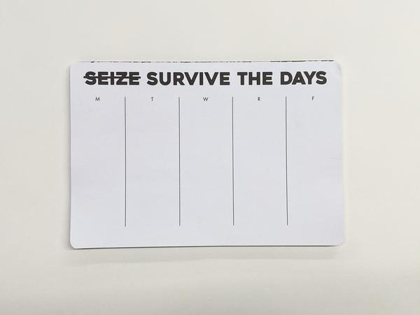 Humorous Tear-Away Notepad Seize Crossed Out Survive The Days