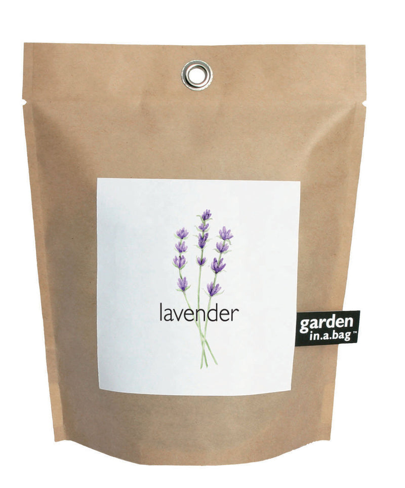 Small Lavender Garden-in-a-Bag :: Potting Shed Creations
