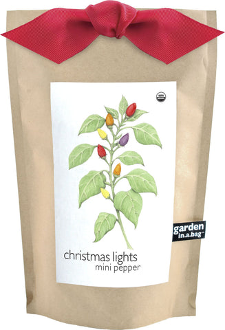 Christmas Lights Peppper Garden in a Bag :: Potting Shed Creations