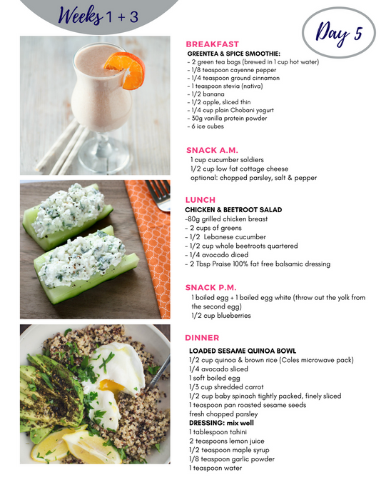 28 Day BLAST FAT Meal Plan