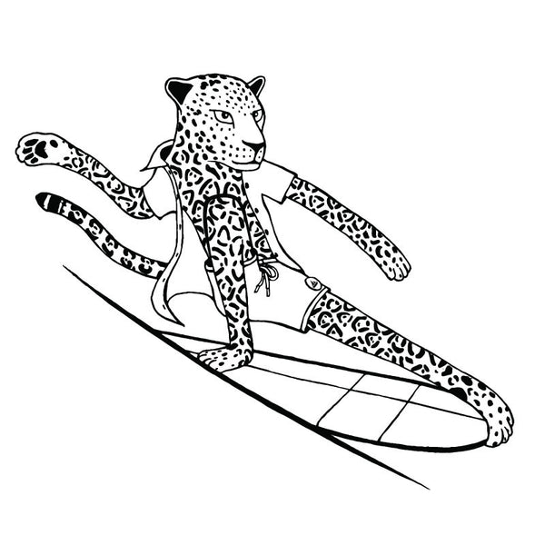 the surfing animals alphabet coloring book