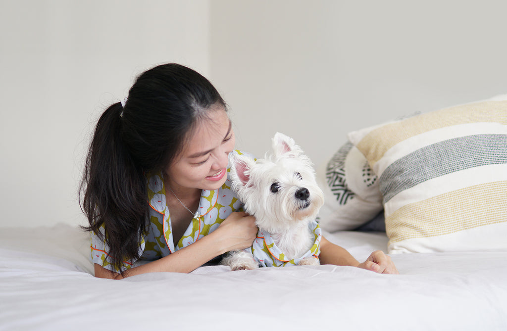 SIX Things To Do with Your Dog While Staying at home!